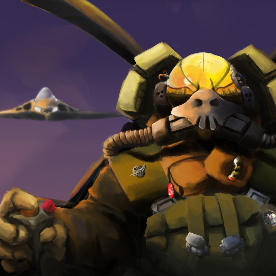 Gunship pilot