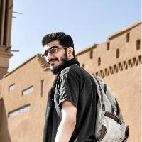 سید محسن مصطفوی